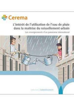 L'intérêt de l'utilisation de l'eau de pluie dans la maîtrise du ruissellement urbain : les enseignements d'un panorama international