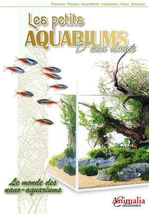 Les petits aquariums d'eau douce : le monde des nano-aquariums