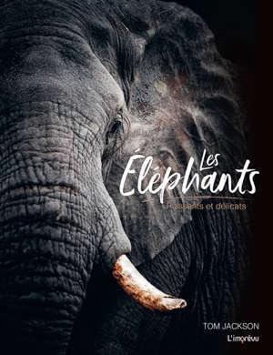 Les éléphants : puissants et délicats