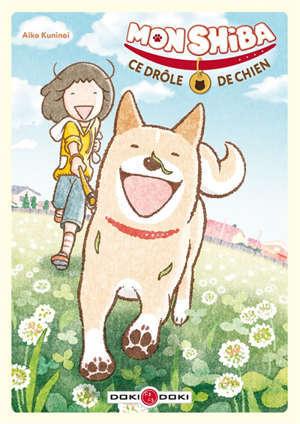 Mon shiba, ce drôle de chien