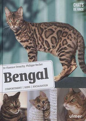 Bengal : comportement, soins, socialisation