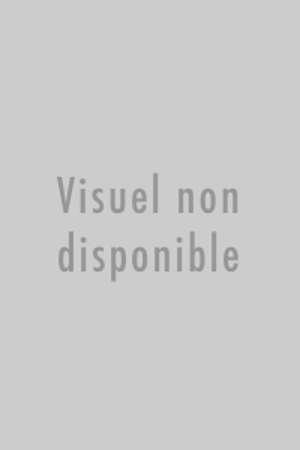 PROSPERINE VIRGULE-POINT ET LA PHRASE SANS FIN