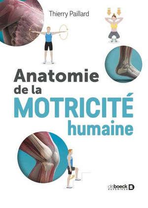 Anatomie de la motricité humaine