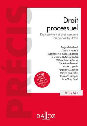 Droit processuel : droits fondamentaux du procès