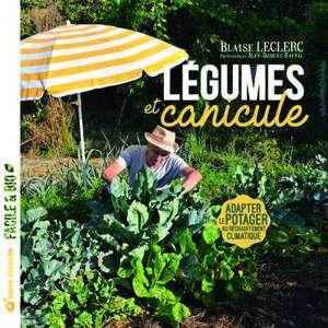 Légumes et canicule : adapter le potager au réchauffement climatique