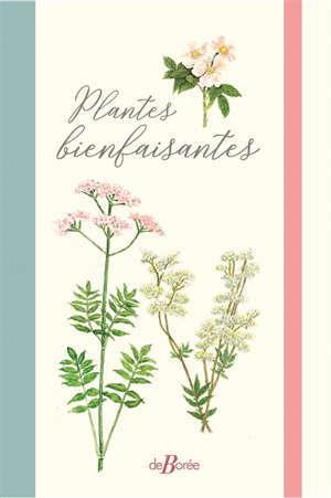 Plantes bienfaisantes