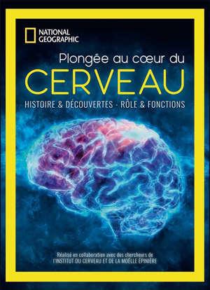 Plongée au coeur du cerveau : histoire & découvertes, rôle & fonctions
