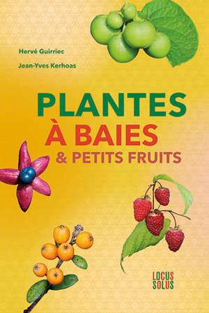 Plantes à baies & petits fruits
