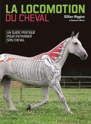La locomotion du cheval : un guide pratique pour entraîner son cheval