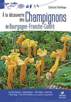 A la découverte des champignons de Bourgogne-Franche-Comté