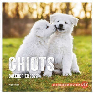Chiots : calendrier 2022