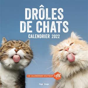 Drôles de chats : calendrier 2022