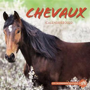 Chevaux : calendrier 2022
