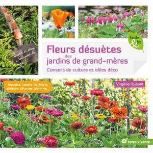 Fleurs désuètes des jardins de grand-mères : conseils de culture et idées déco