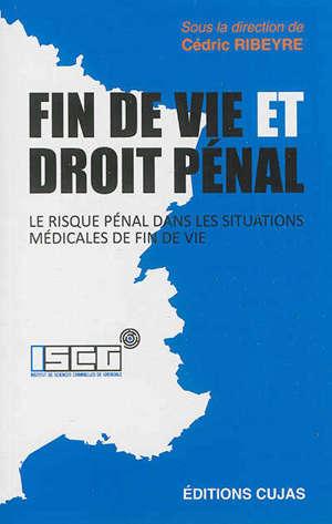 Fin de vie et droit pénal : le risque pénal dans les situations médicales de fin de vie