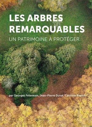Les arbres remarquables : un patrimoine à protéger