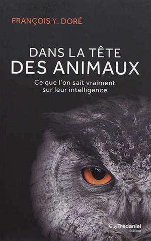 Dans la tête des animaux : ce que l'on sait vraiment sur leur intelligence