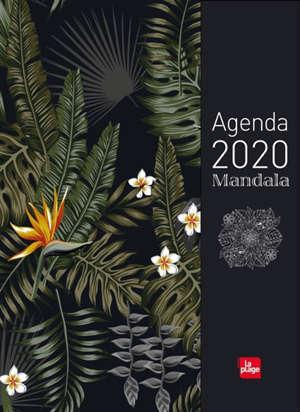 Agenda mandala 2020 : jungle méditation