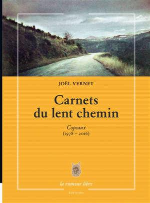 Carnets du lent chemin : copeaux (1978-2016)
