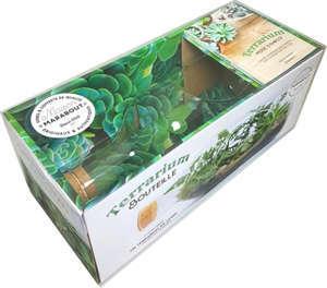 Coffret terrarium bouteille