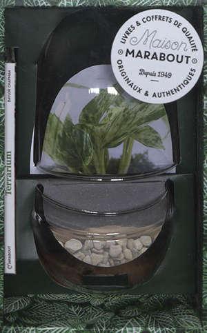 Coffret terrarium oeuf