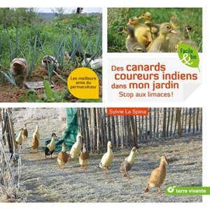 Des canards coureurs indiens dans mon jardin : stop aux limaces ! : les meilleurs amis du permaculteur