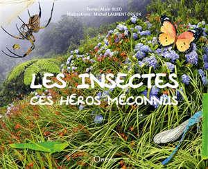 Les insectes : ces héros méconnus