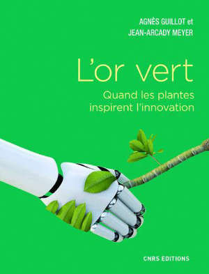 L'or vert : quand les plantes inspirent l'innovation